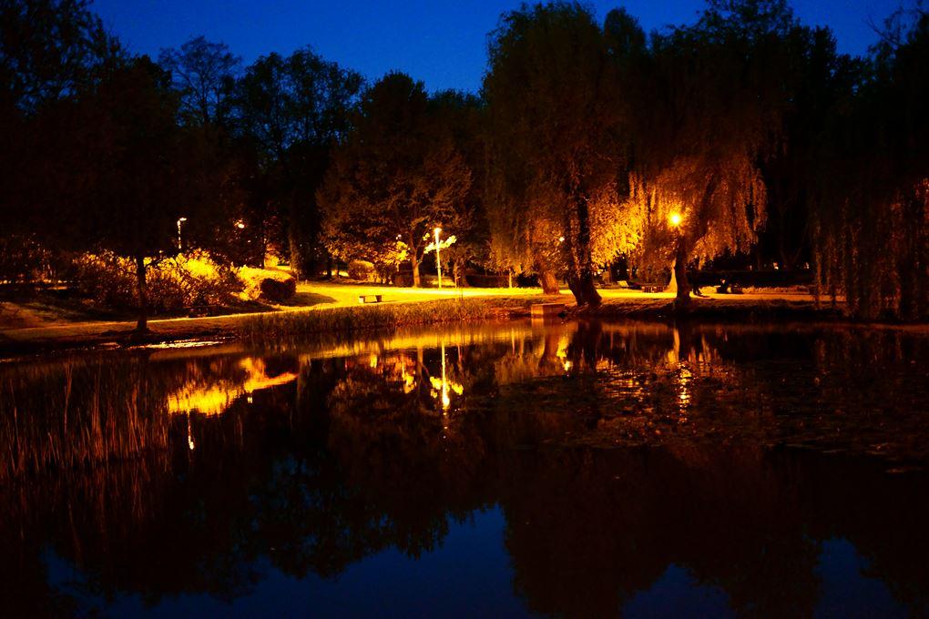 Park Róż w Chorzowie – zdjęcia 360