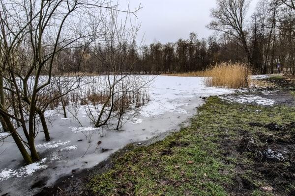 Park im. Rotmistrza Witolda Pileckiego