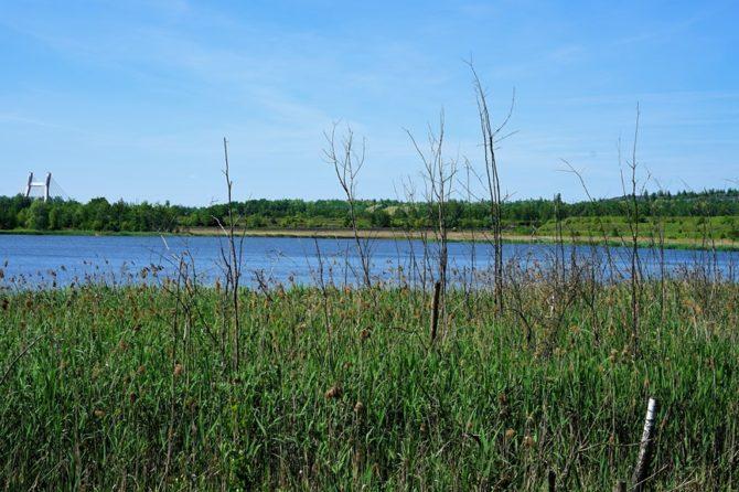 Jezioro Farskie