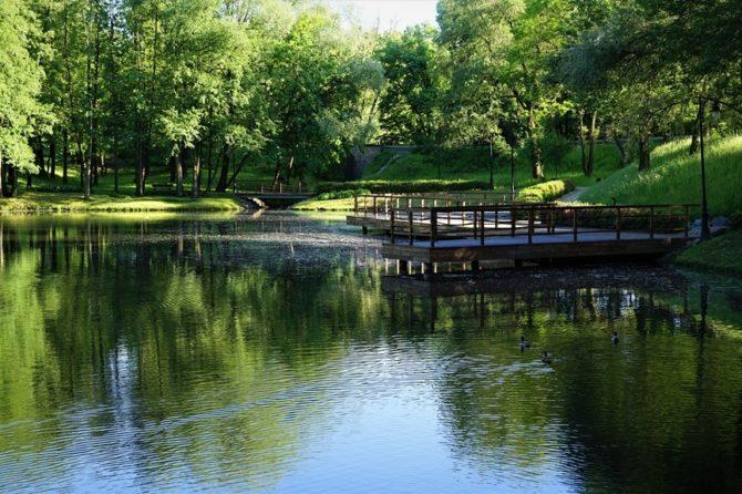 Park gminny w Ornontowicach