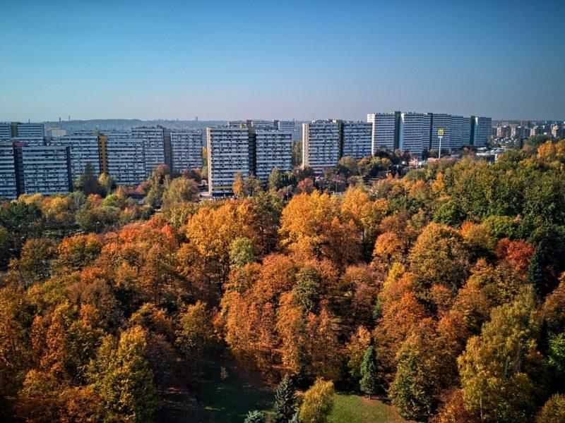 park śląski w Chorzowie
