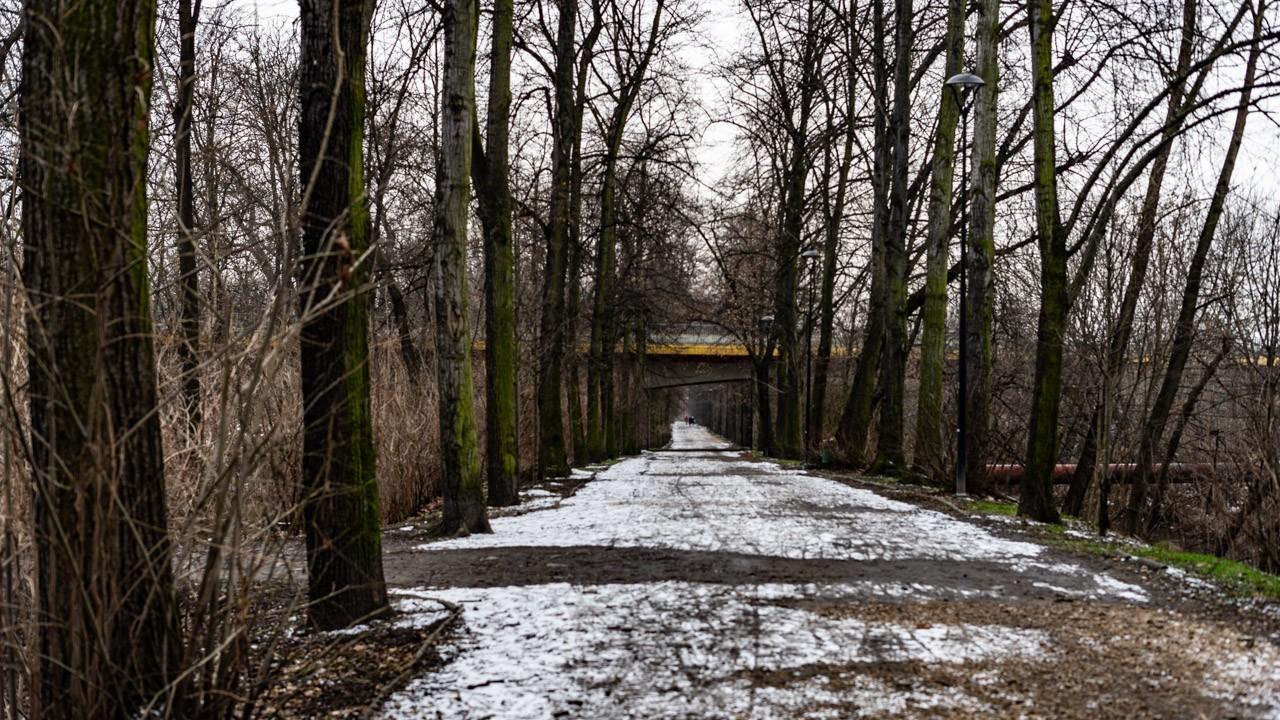 Zabrze zimą Park Dubiela